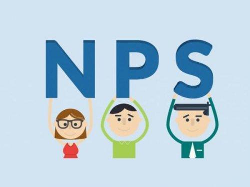 可能会对选择NPS基金期权或养老基金经理感到困惑