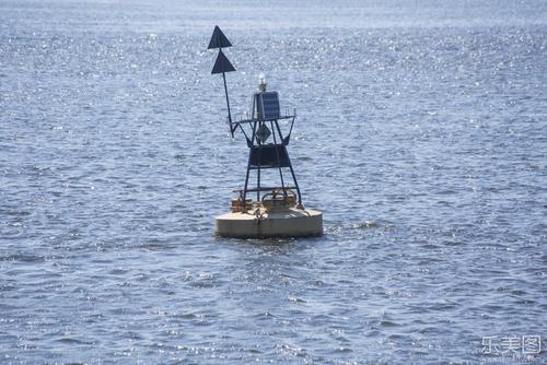 装有数据接收器的固定浮标只能为您提供有关快速移动的海洋生物的少量信息