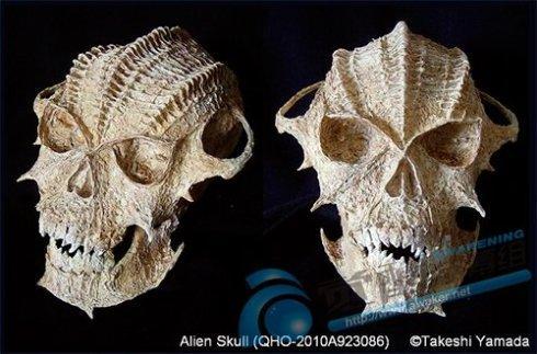 来自希腊洞穴的头骨至少有210,000年的历史