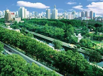 美国的研究提出了对当前城市绿化计划的长期利益的质疑