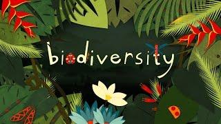 缓慢回归多样性是由于生态和可能性之间的紧张关系