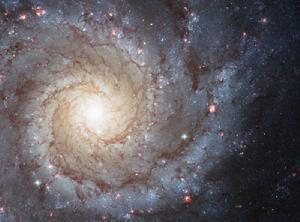 研究人员计划将星系变成一个巨大的探测器