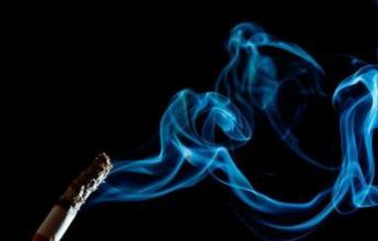 美国的研究表明与烟草分离的尼古丁会影响胚胎的发育
