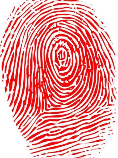 苹果或恢复指纹下一代很可能全面屏代替刘海屏