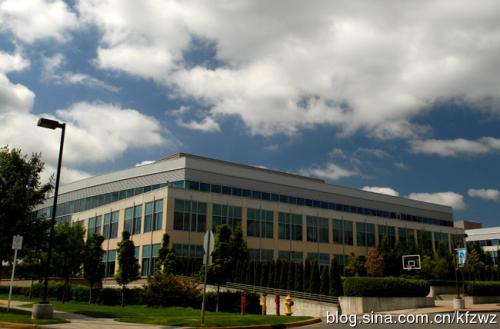 提供所谓的蓝色徽章中的Microsoft企业技术支持服务