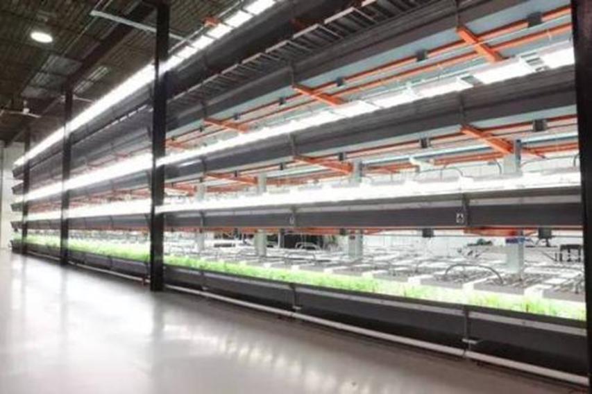 乌节街完成利兹仓库租赁的63000平方英尺