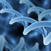 AI可用于检测和分级前列腺癌