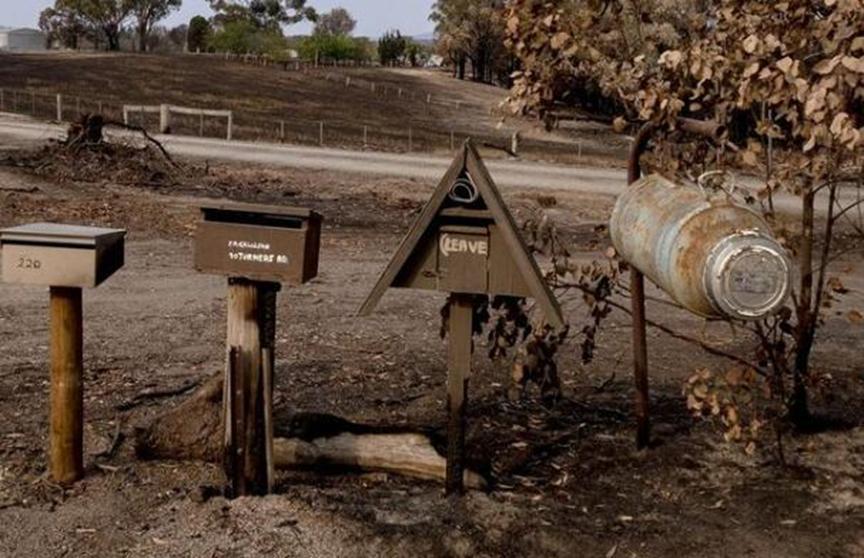 可怕的丛林大火季节迫使利率创下新低