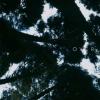 三星为Galaxy S20共享新的地平线之上主题