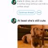 Twitter推出继续线程功能以链接旧推文