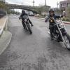 2020 Harley-Davidson Softail Standard是美国双胞胎的入门药物