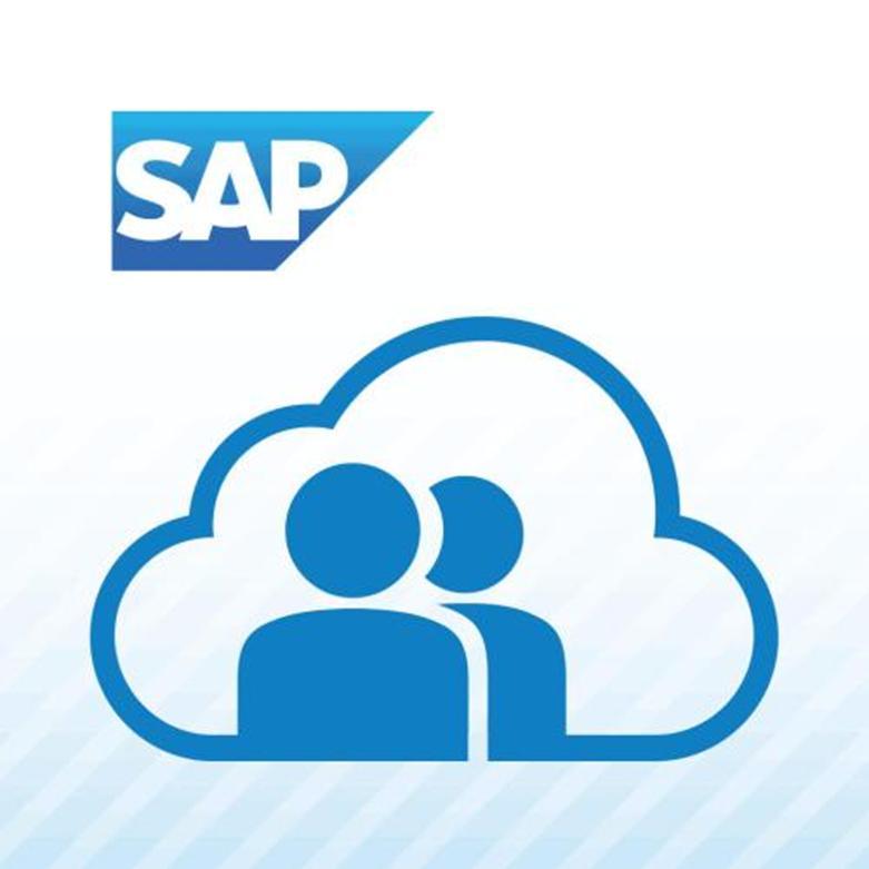SAP由政府选择以测试工资和人力资源需求的复杂性