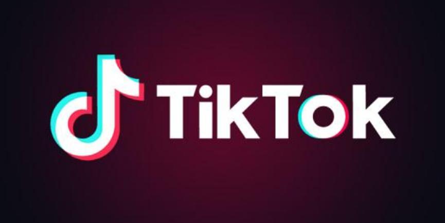 TikTok现在以新的家庭配对品牌正式走向全球