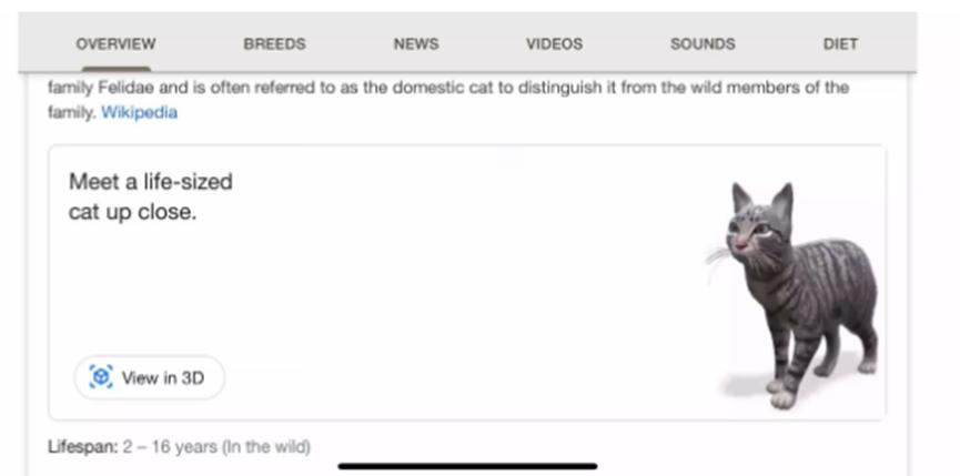 Google的AR动物将您变成家中的老虎王