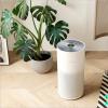 小米的Smartmi空气净化器在Kickstarter上推出,起价219美元